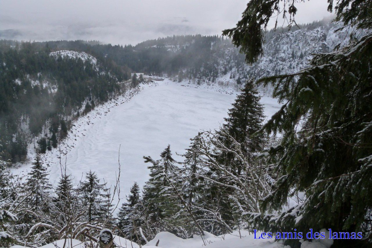 Vue sur le lac blanc