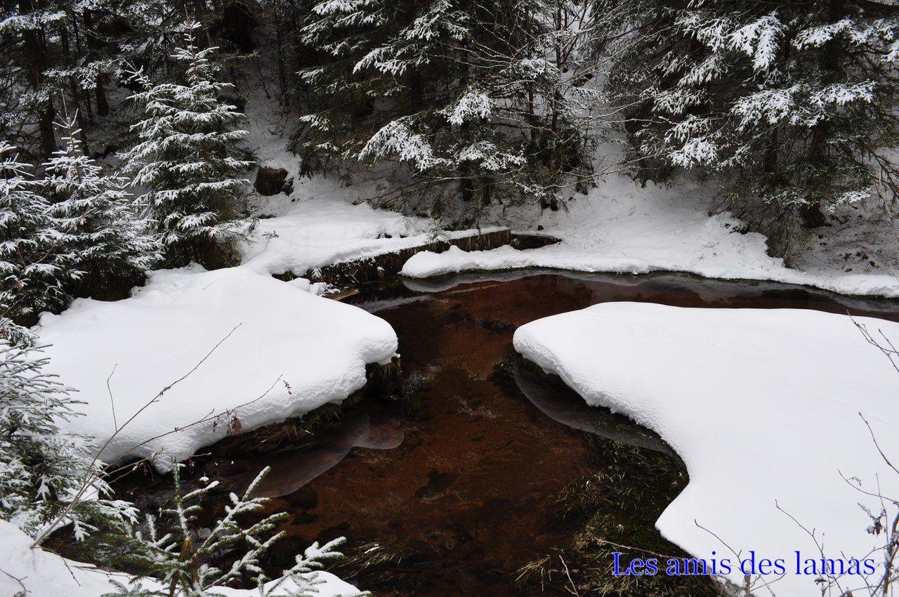 Ruisseau de belbriette serpentant dans la neige