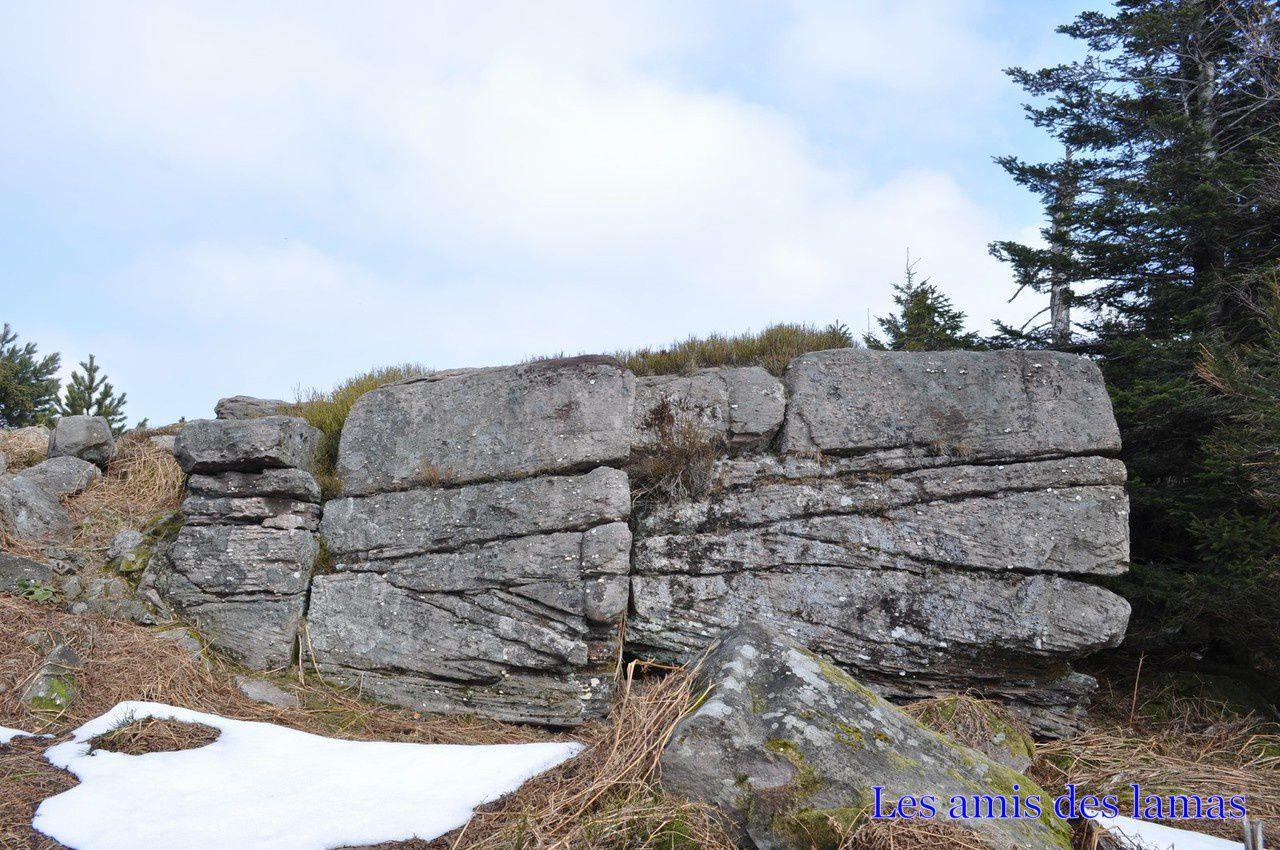 Belles cupules sur un rocher