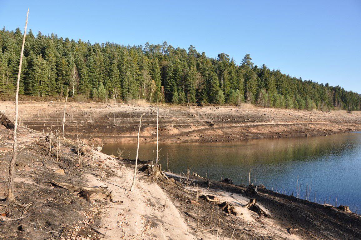 Quelques anses rarement explorées lorsque le lac est à son niveau normal du fait d'absence de sentier.