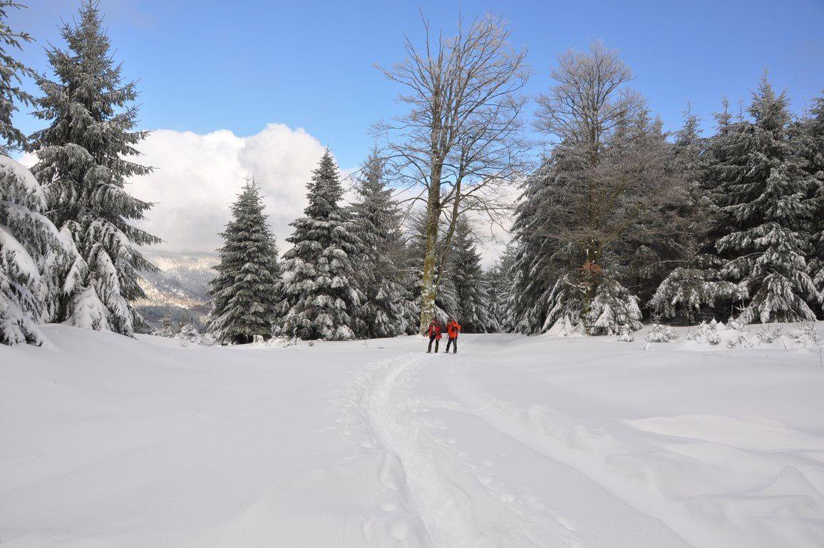 Sur le chemin du retour au pied du Kohlberg