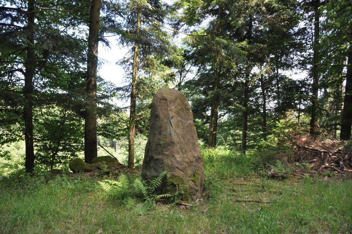 """Sur le chemin du retour , une pierre levée , une tête sculptée qui semble représenter un personnage très connu et la sculpture """"Y"""" de A. Wolf."""
