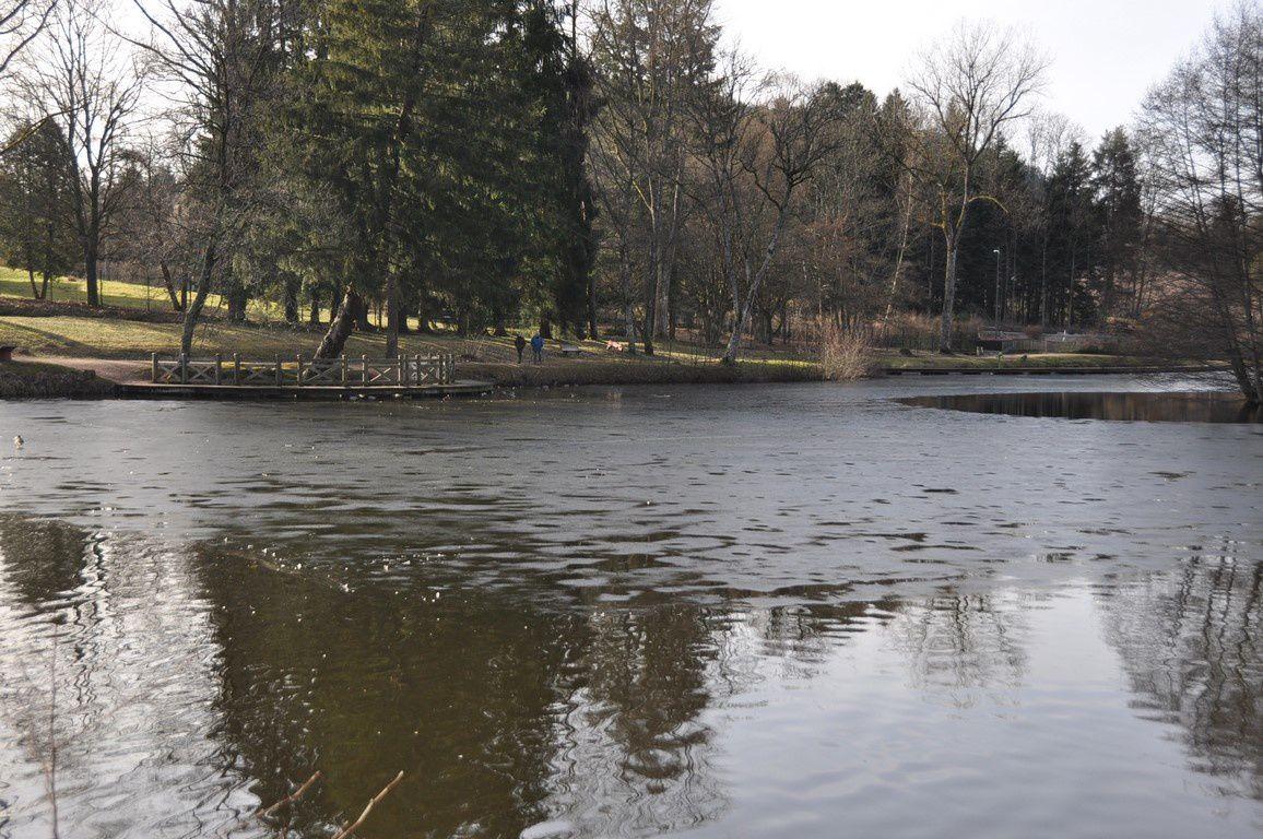 Un joli saut pour arriver aux étangs du Pointhaie....