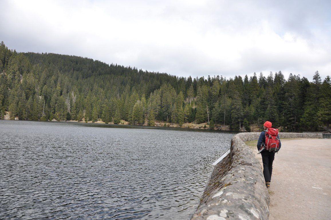 Le lac vert bien gris ....