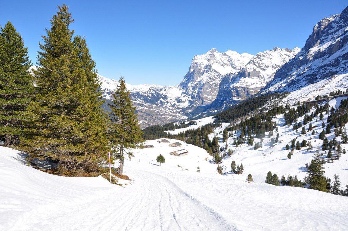L'alpage de Alpiglen