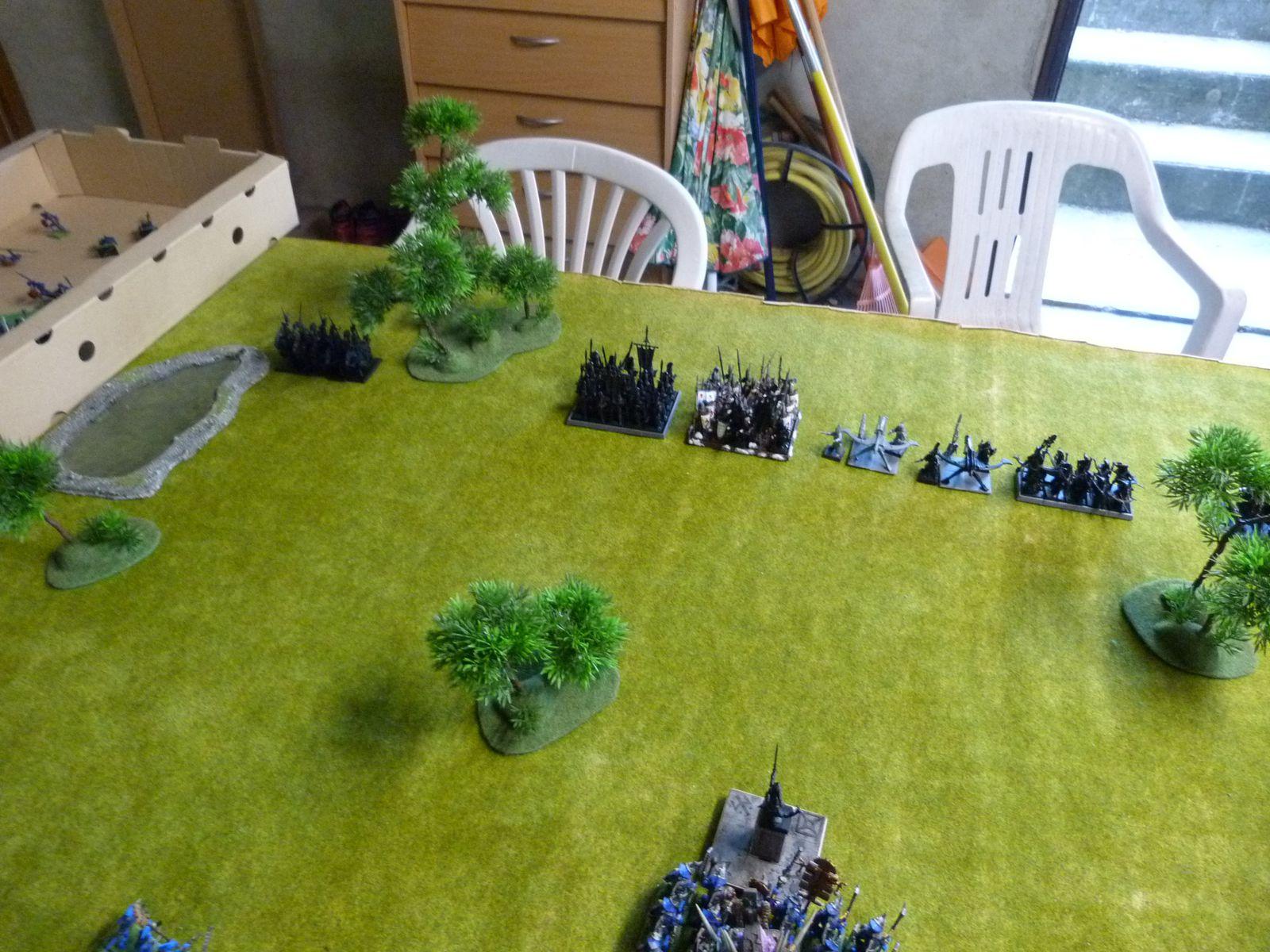 5 patrouilleurs Ellyriens, 20 maîtres des épées, 20 gardes maritimes avec le sorcier de haute magie et une grande bannière, 2 balistes, 9 soeurs d'Avelorn avec le sorcier de l'ombre (général de l'armée)...