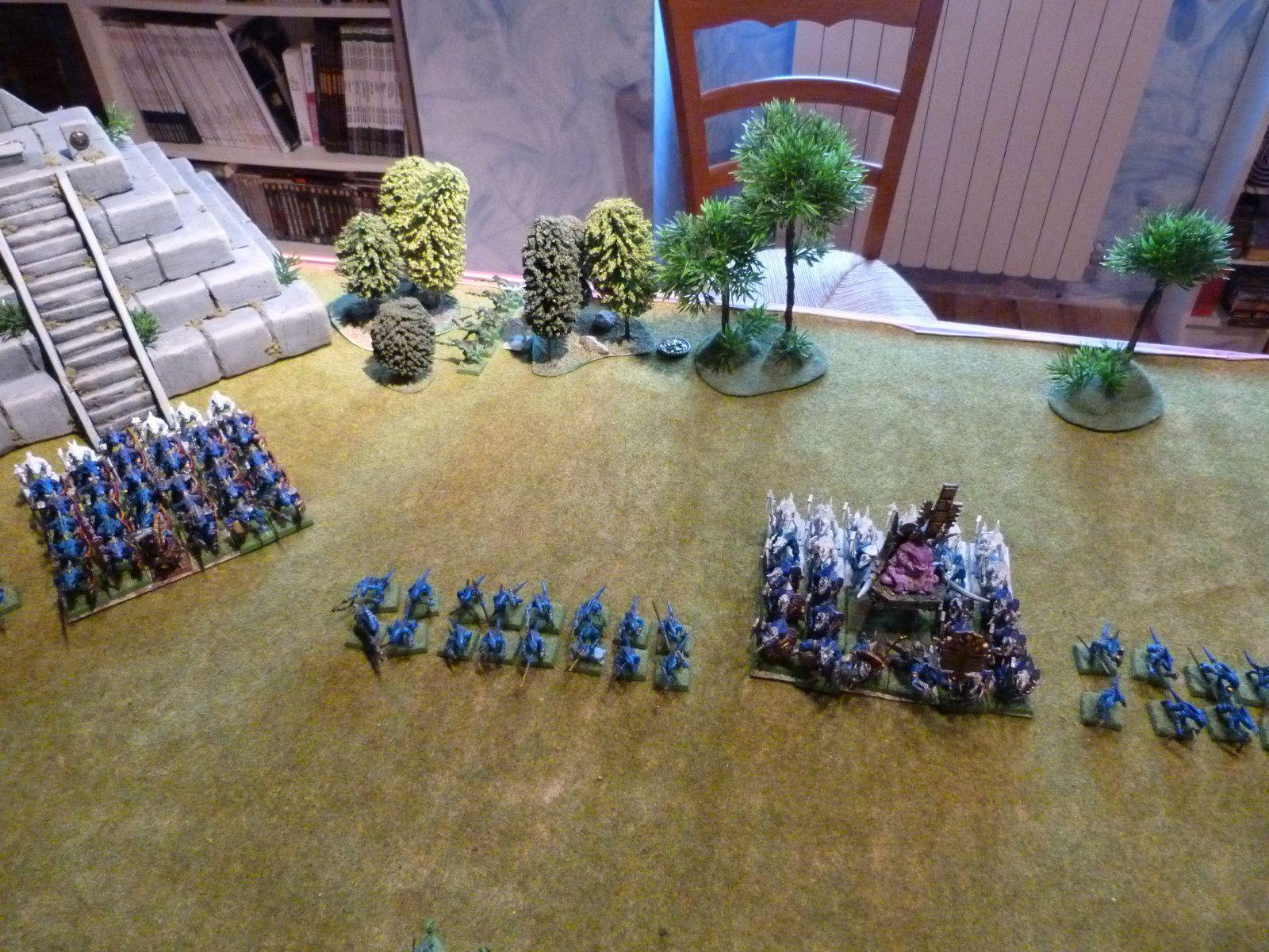 ... 7 caméléons (si, si au fond à gauche, dans les bois),15 skinks + prêtre, 26 gardes du temple + slann...