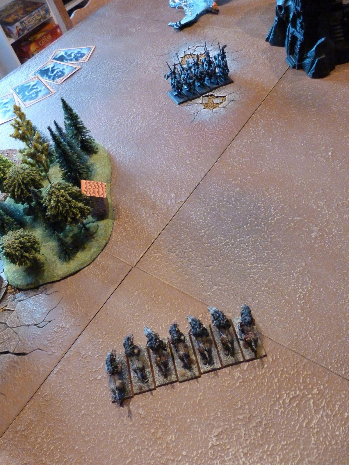 Un phénix coeur de givre, 12 princes dragons avec état-major complet, général, grande bannière et sorcier au deuxième rang, 12 heaumes d'argent avec état-major complet et 2 unités de 5 patrouilleurs ellyriens.