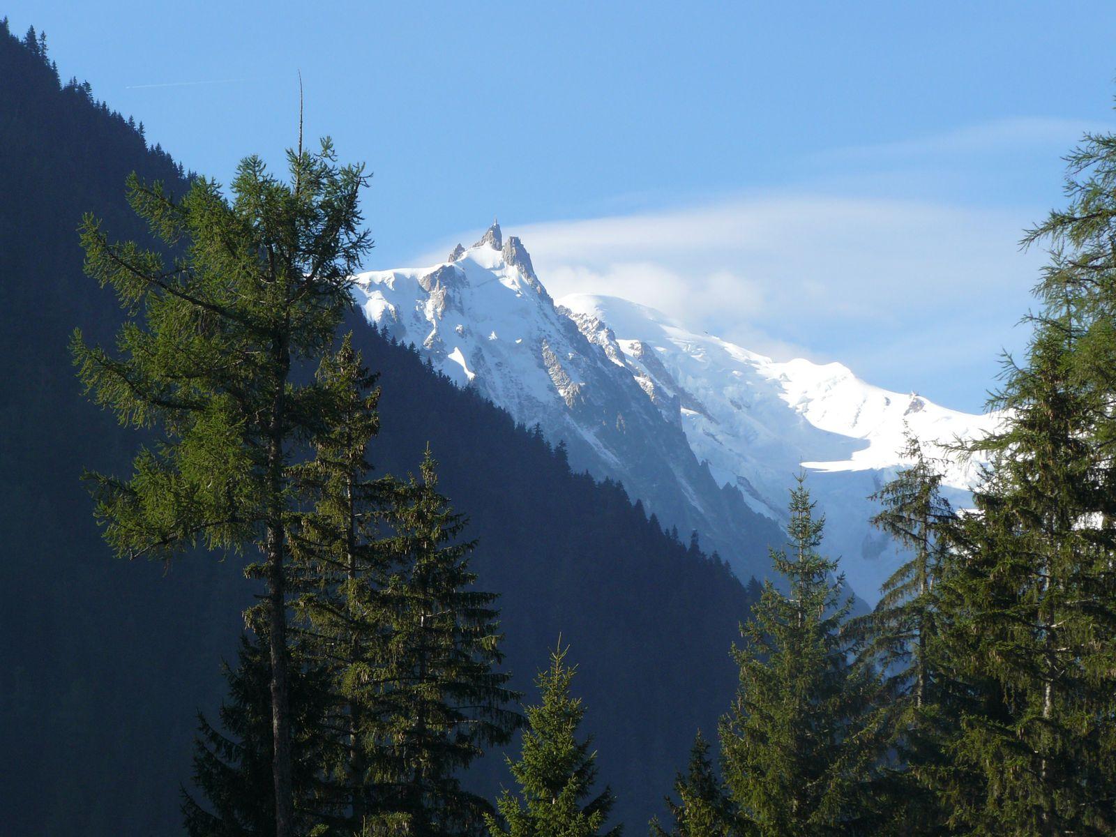 Point de vue du Glacier d'Argentière