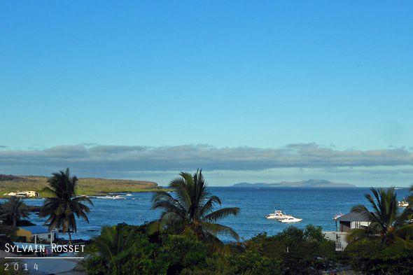 Paysage des Galápagos - île Santa Cruz