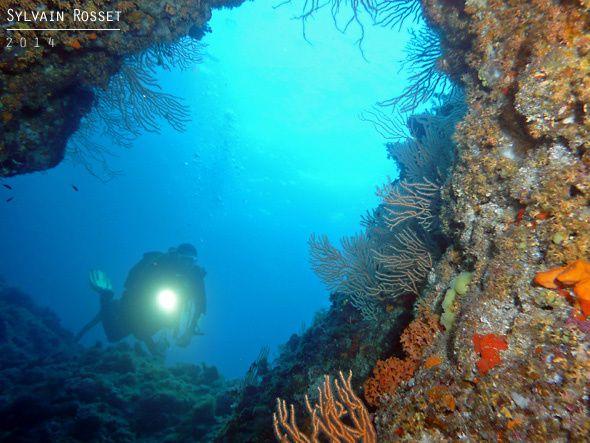 Paysage des calanques de Marseille et plongeur