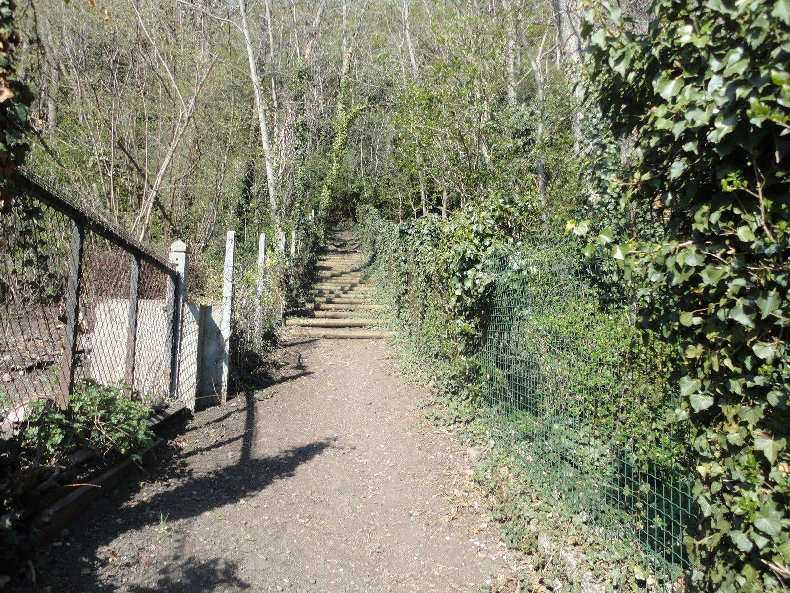 Village et oppidum de Corent