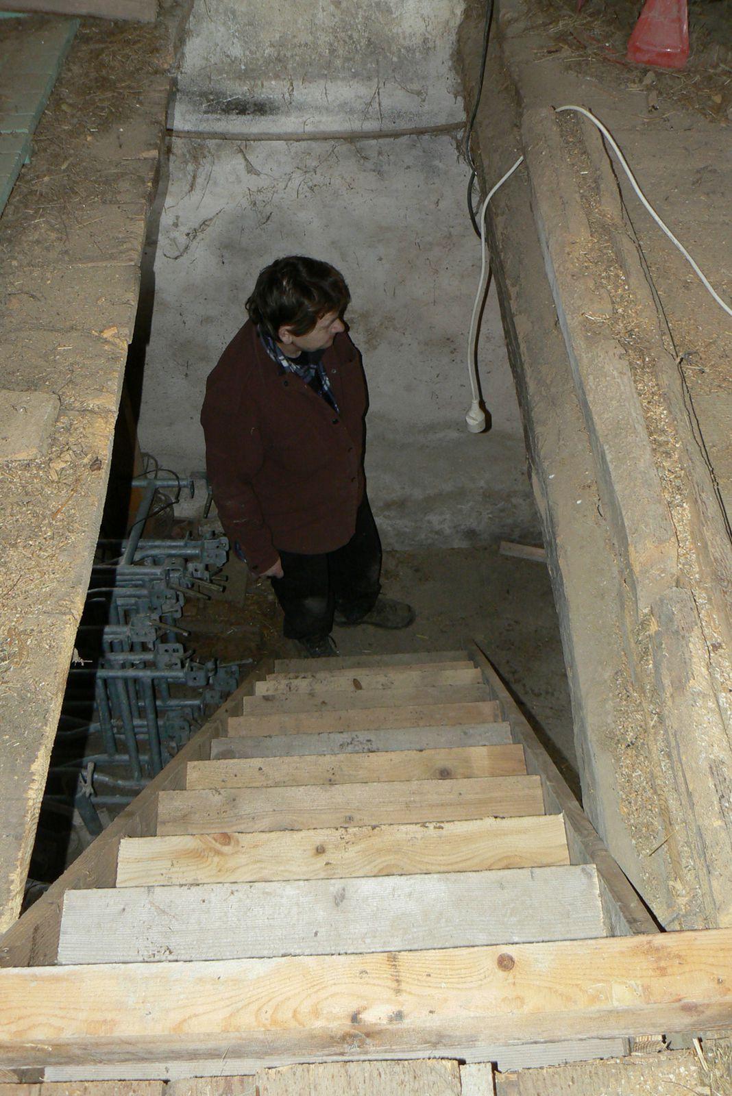Un petit escalier en bois