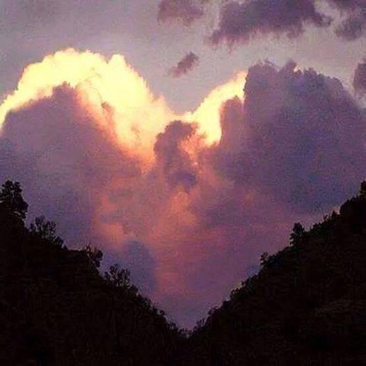 Eckhart Tolle: &quot&#x3B;Le véritable amour.&quot&#x3B;