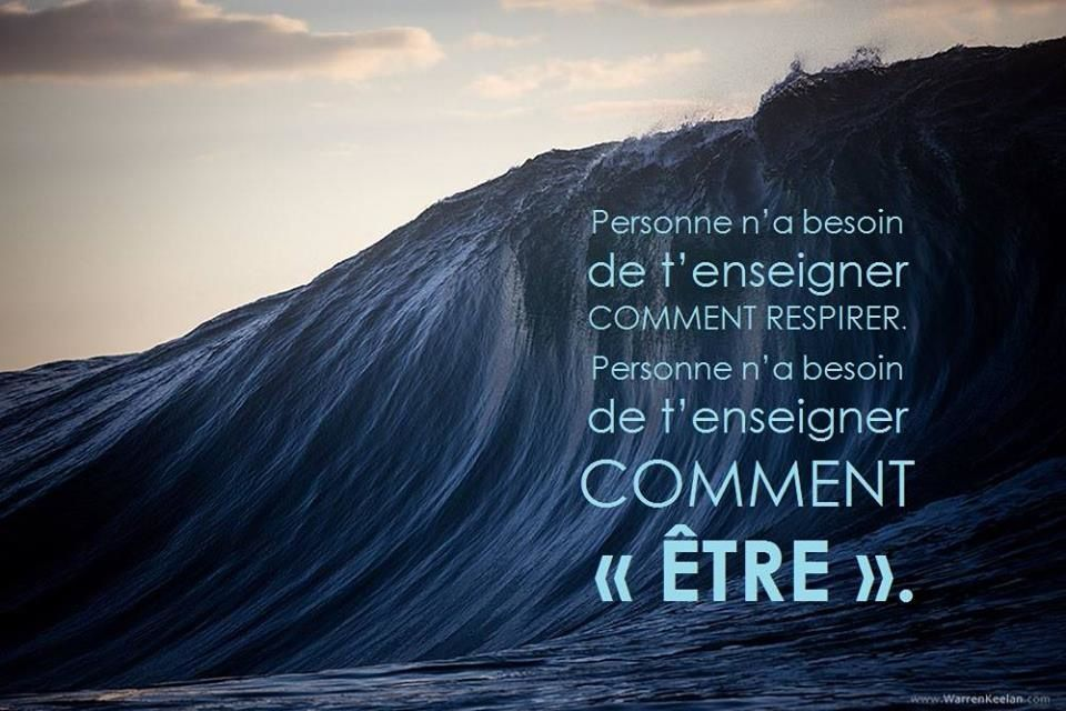Image/citation du jour.