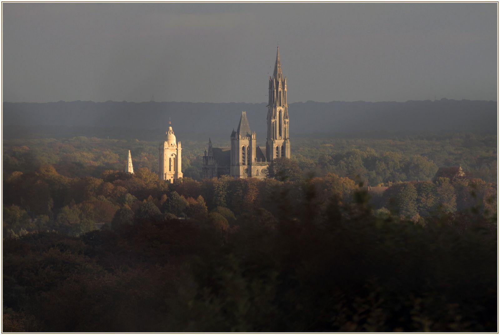La cathédrale en pleine forêt