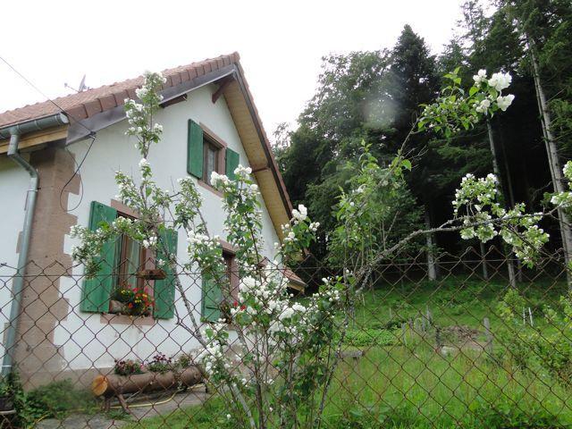 Nous avons rejoint le disque jaune et passons devant la maison forestière du Klein Wisches.