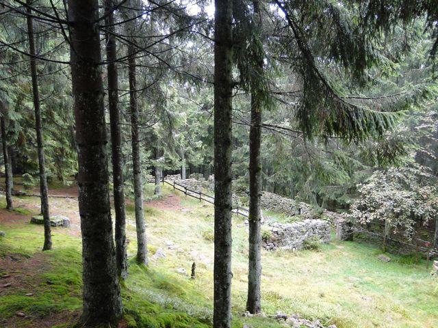 Sentier des passeurs, Moussey – La Haute Loge – Ruine de la marcairerie