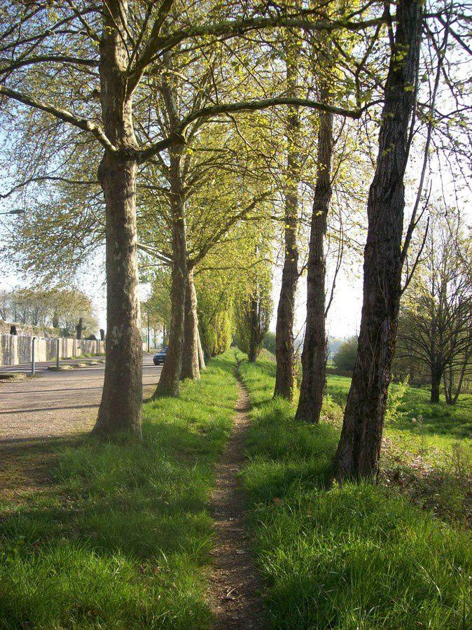 Rue de la Maladière - 71400 Autun.