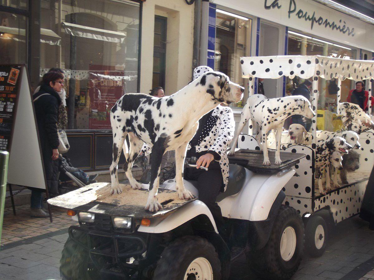 Grande parade en ville avec de nombreux artistes et musiciens et animaux, le samedi 12 octobre 2013 à 11h.  ¤¤¤ 18 photos de Autun-infos (Mr Bastien Migault) et 11 photos Patrick l'autunois. ¤¤¤