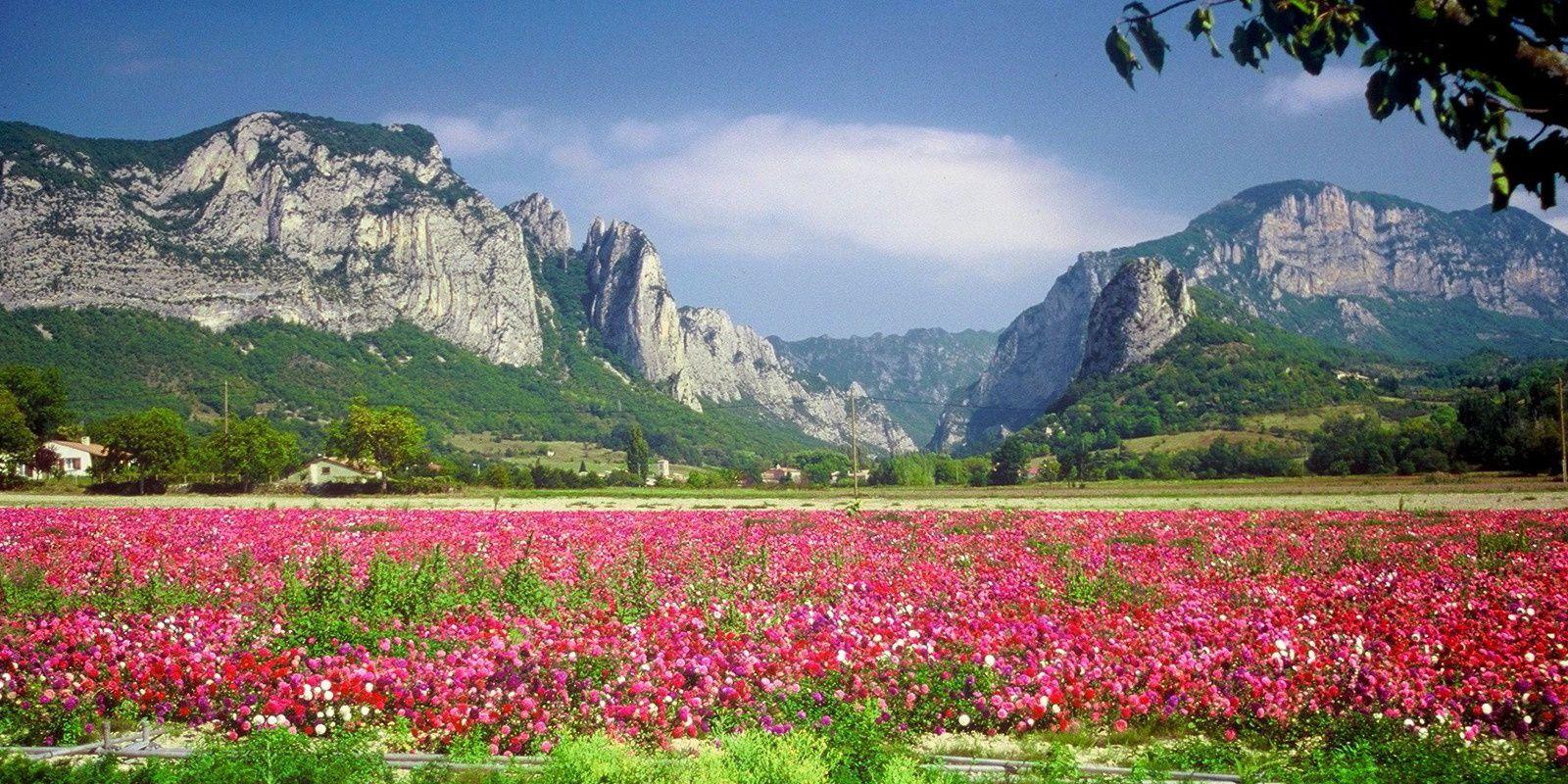 La Drôme c'est haut en couleurs...