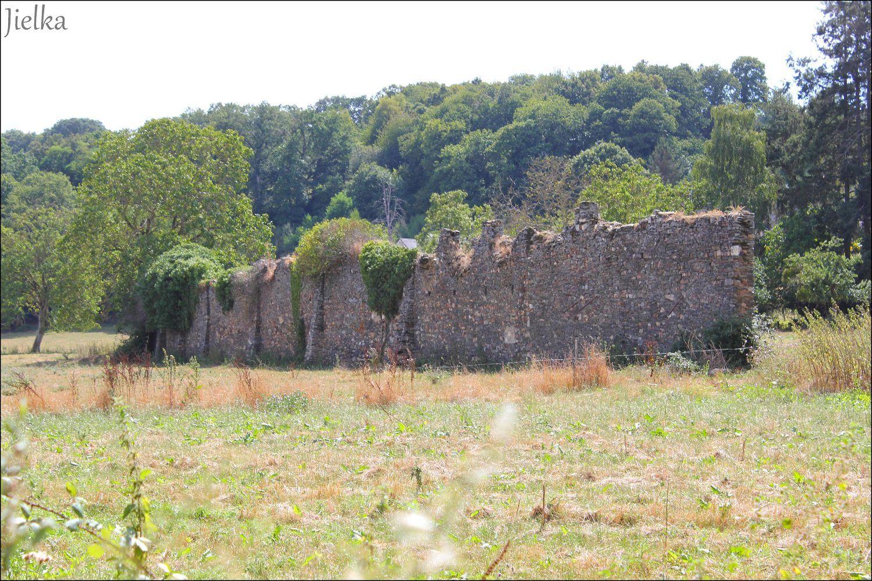 On trouve dans le village les vestiges d'une abbaye bénédictine datant de 1109.