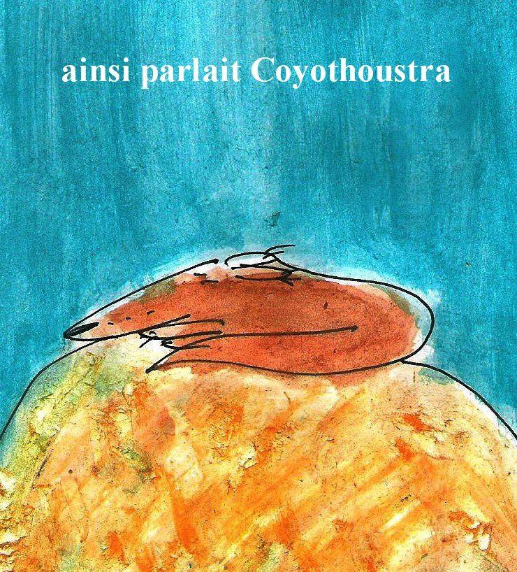 coyothoustra