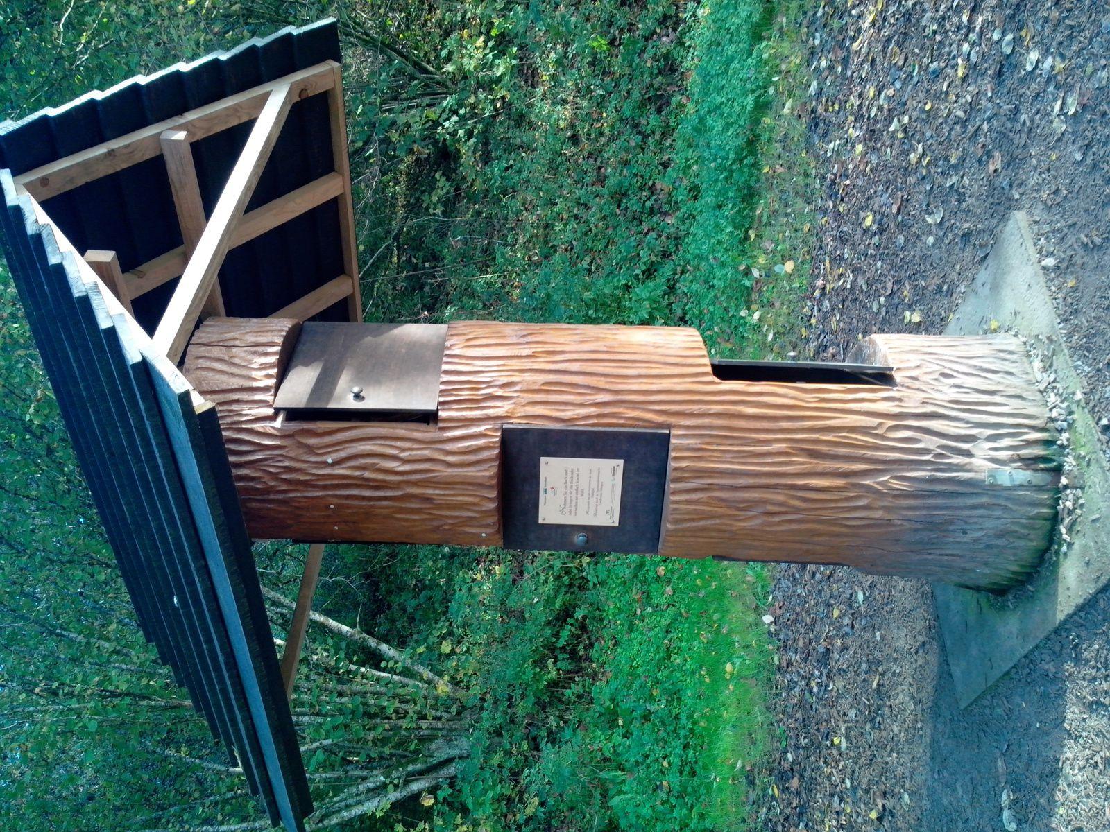 L'arbre-livre de Bebenhausen, découvert au hasard d'un dimanche après-midi en forêt.