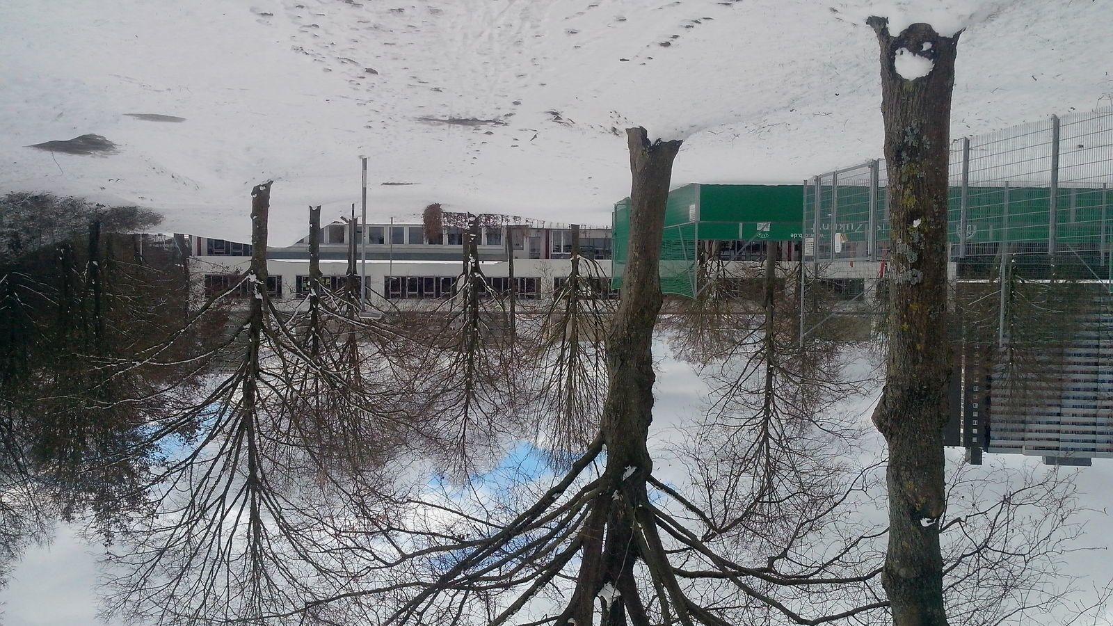 Poésie d'hiver
