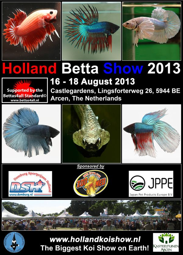 Holland Shrimp Show 2013