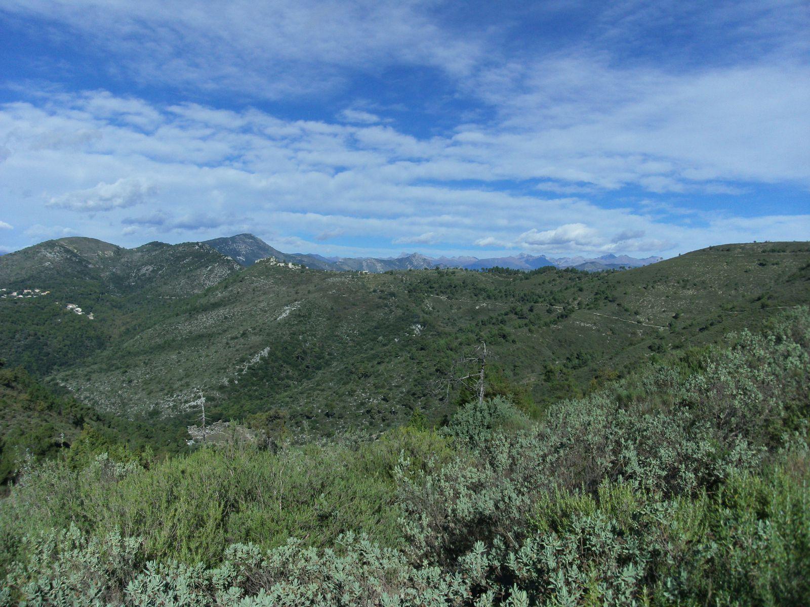 Mont Macaron (806m)