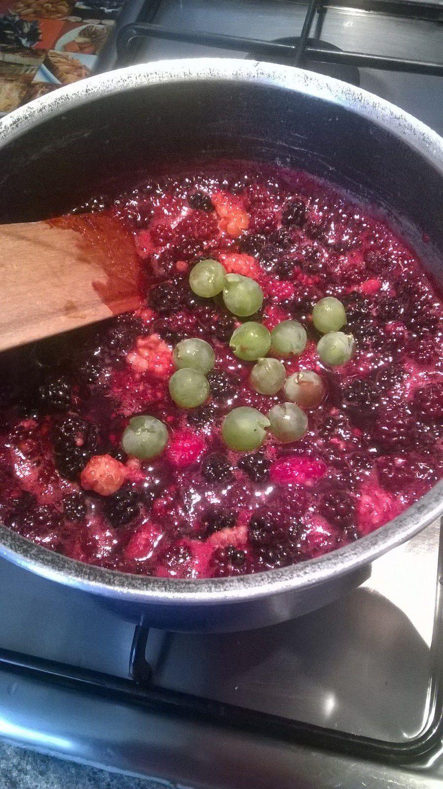 Confiture de mûre, framboise, raisin et pommes (tout du jardin)