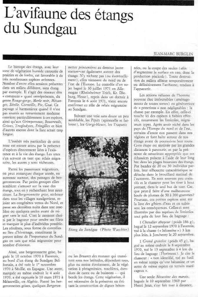 Bulletin de la Société Industrielle de Mulhouse N° 2/1973, article de Jean-Marc Burglin sur l'avifaune des étangs du Sundgau