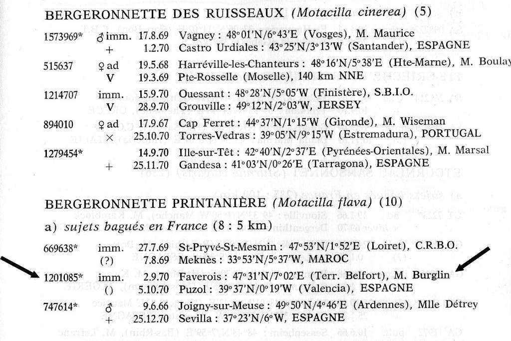 Bulletin du CRMMO 23-24 de 1969-70 avec contrôles d'oiseaux bagués dont plusieurs de Jean-Marc Burglin
