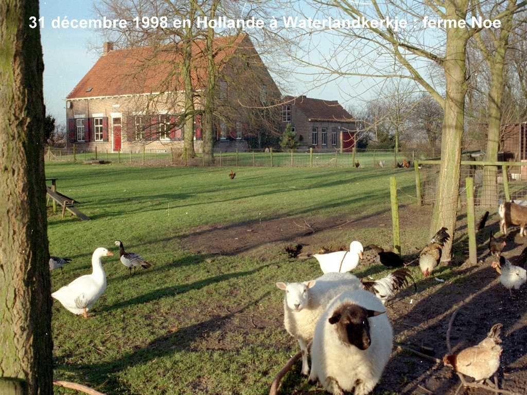 Scans anciennes photos voyages et nature de 1965 à juillet 1999 (faible qualité)