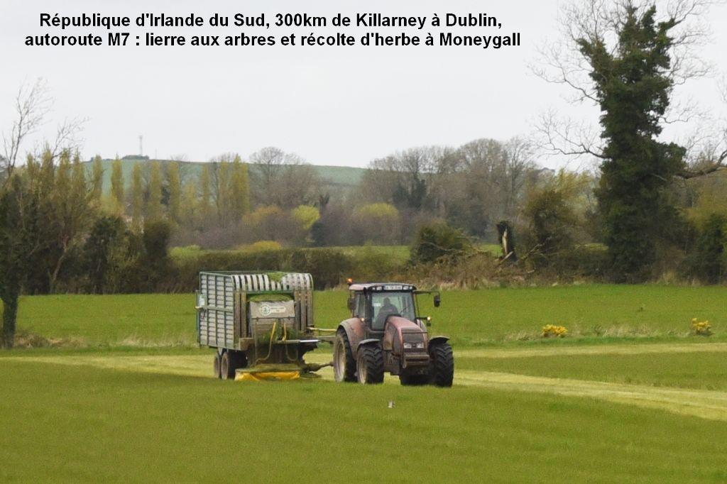 00004t- Irlande du 5 au 15 avril 2017