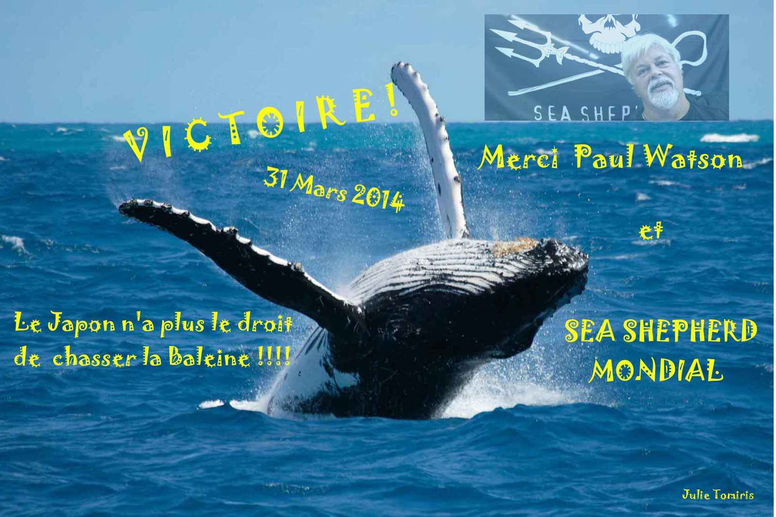 &quot&#x3B;V&quot&#x3B; comme VICTOIRE, &quot&#x3B;B&quot&#x3B; comme BALEINES !!