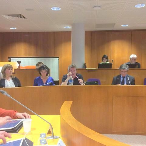 Dominique Cardot présente le voeu au Conseil municipal