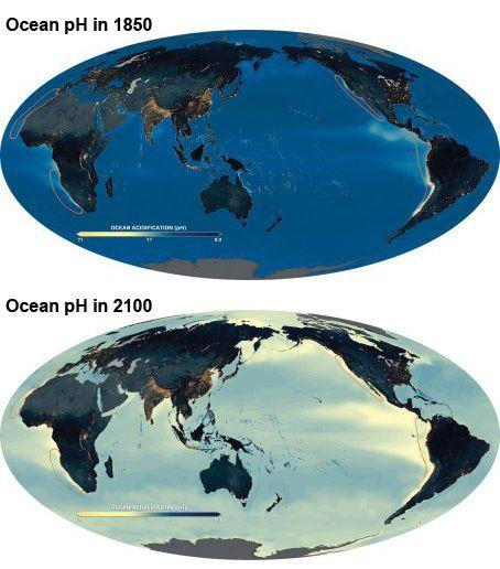 Acidification des océan, l'un des effets les plus préoccupants du réchauffement climatique.