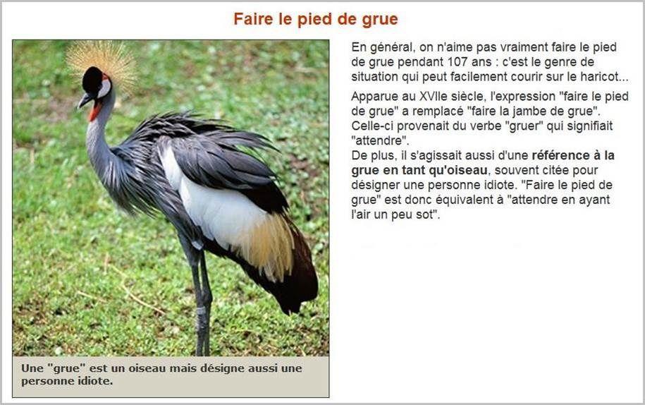 En savoir plus sur nos expressions françaises (8)...