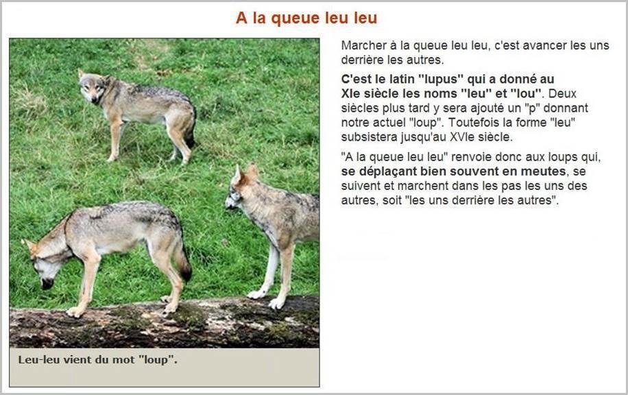 En savoir plus sur nos expressions françaises (11)