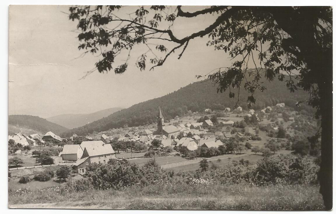 De temps en temps, on partait en camp, et moi j'adorais ça... On marchait longtemps, sac au dos, en chantant... Cette année là, nous étions passés de l'autre côté du Donon, pour arriver dans un petit village en Alsace... C'était chouette, on pique-niquait, on faisait des feux de camp et on dormait dans le foin, dans une grange, juste au dessus des vaches... C'était rigolo...