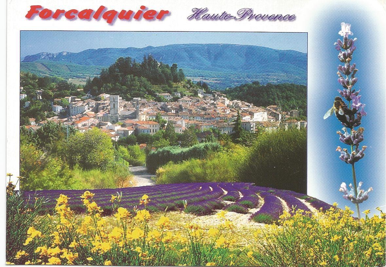 Forcalquier... 04... Chef-lieu d'arrondissement des Alpes de Haute Provence... Altitude 550 mètres... Photo Charles Blanc-Pattin... Editions PhotoGuy... Carte envoyée de Valensole (04) à Frolois (en Meurthe et Moselle) le 12 juin 2002...