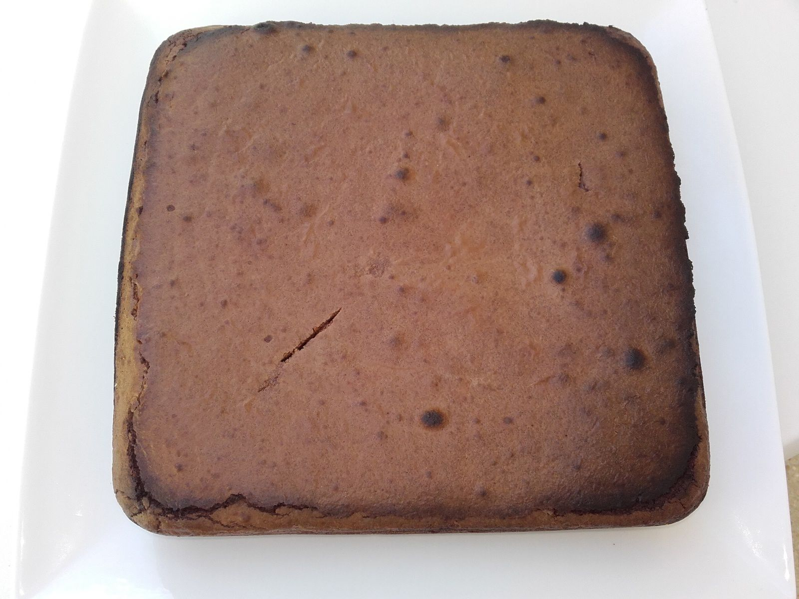 Pavé au chocolat ww