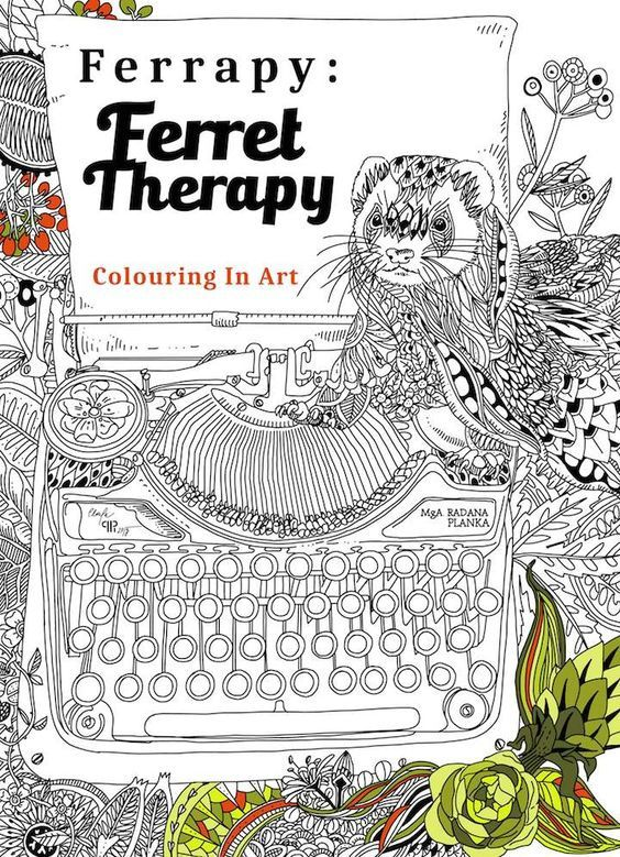 Ferrapy : Ferret Therapy colouring in art