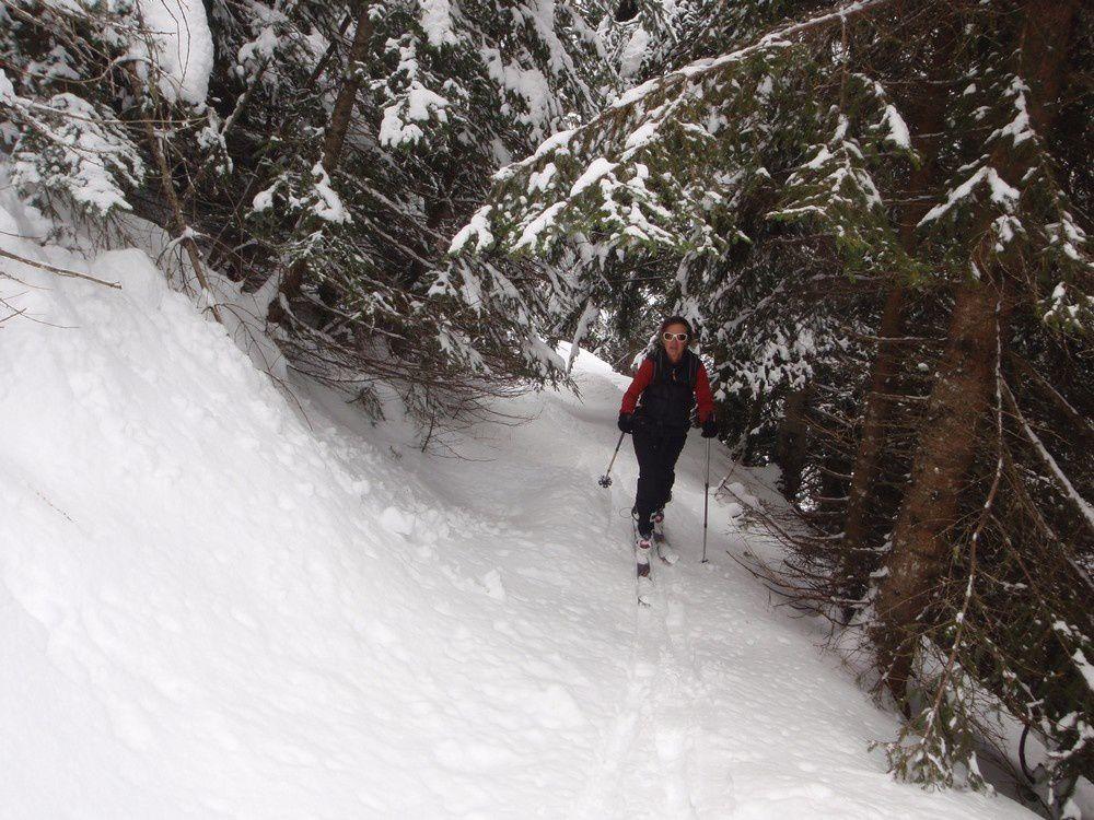 Dès 1200m une belle couche de neige humide dans la foret de cabane vieille. Pas de soucis pour la skiabilité.