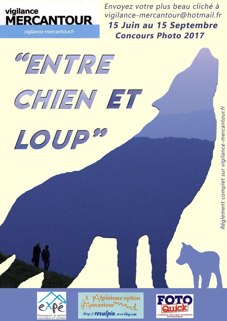 Concours Photo &quot&#x3B;Entre Chien et Loup&quot&#x3B;