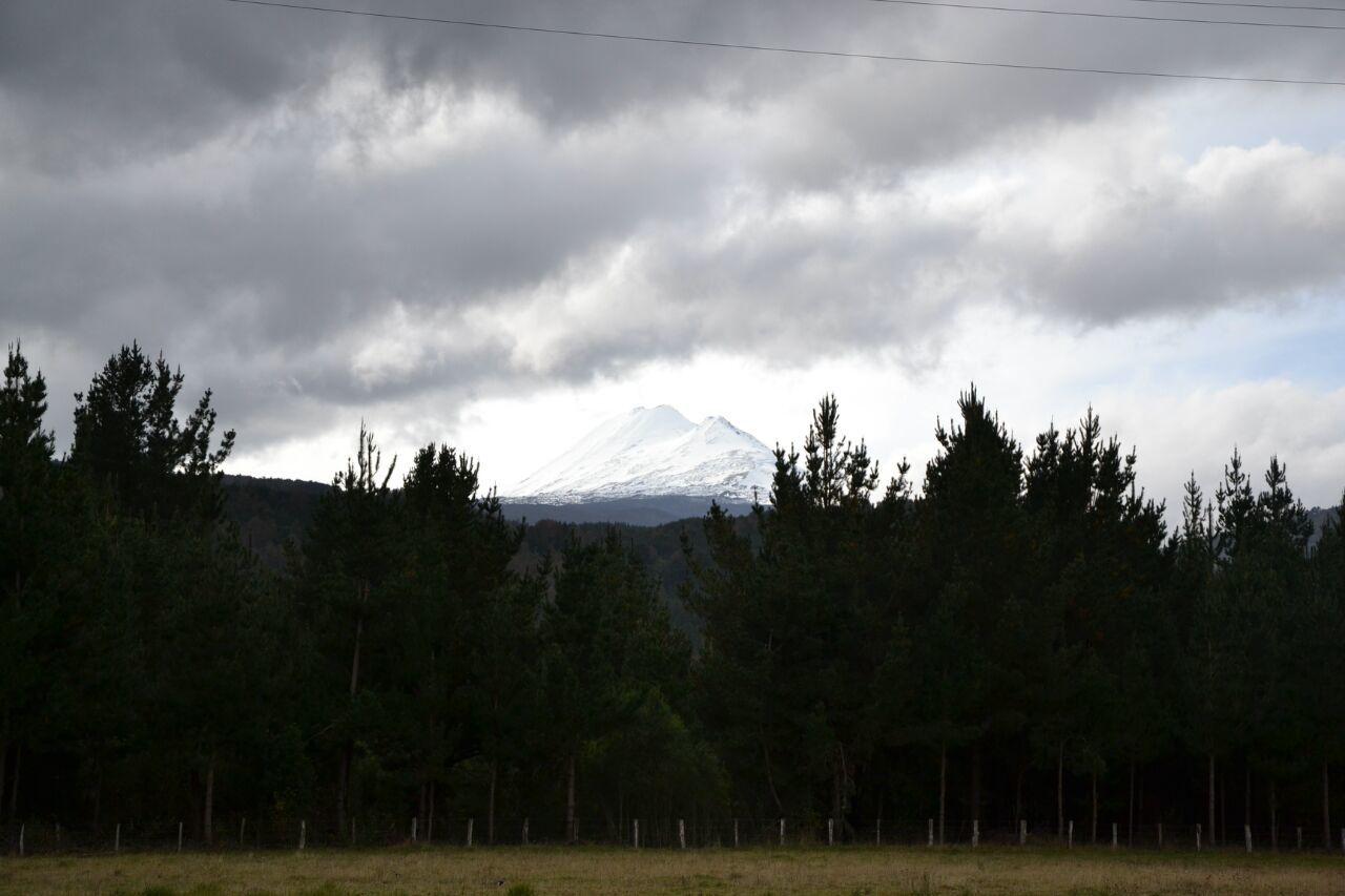 San Martin de los Andes (Argentine) - Cañete (Chili) - 588 km - Contrastes