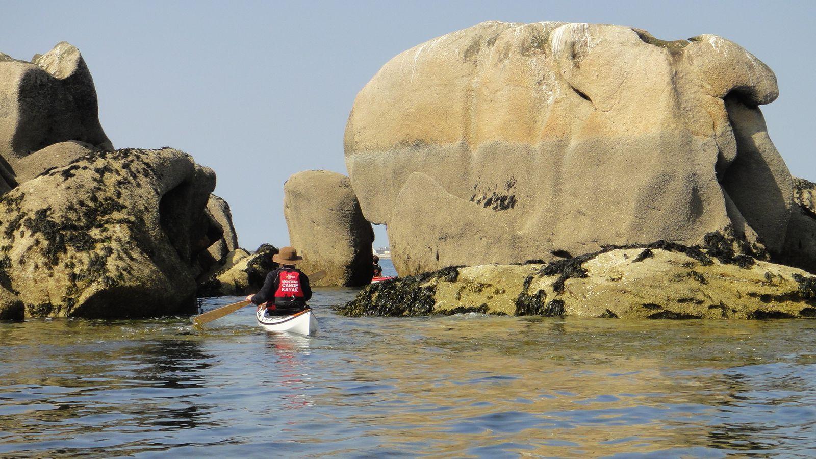 A la rencontre des phoques gris, aux Etocs, mars 2012