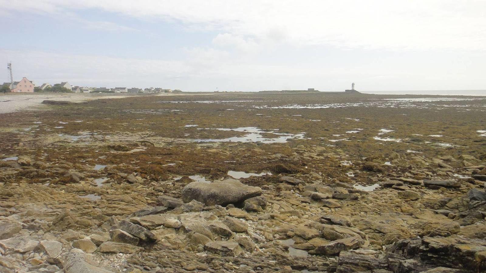 Baie des Trépassés - Tevennec - Ile de Sein (1/2)